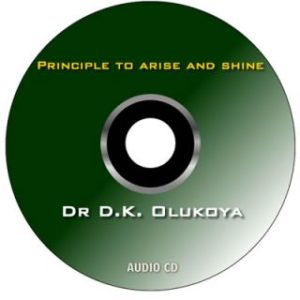 Principles of Arising to Shine